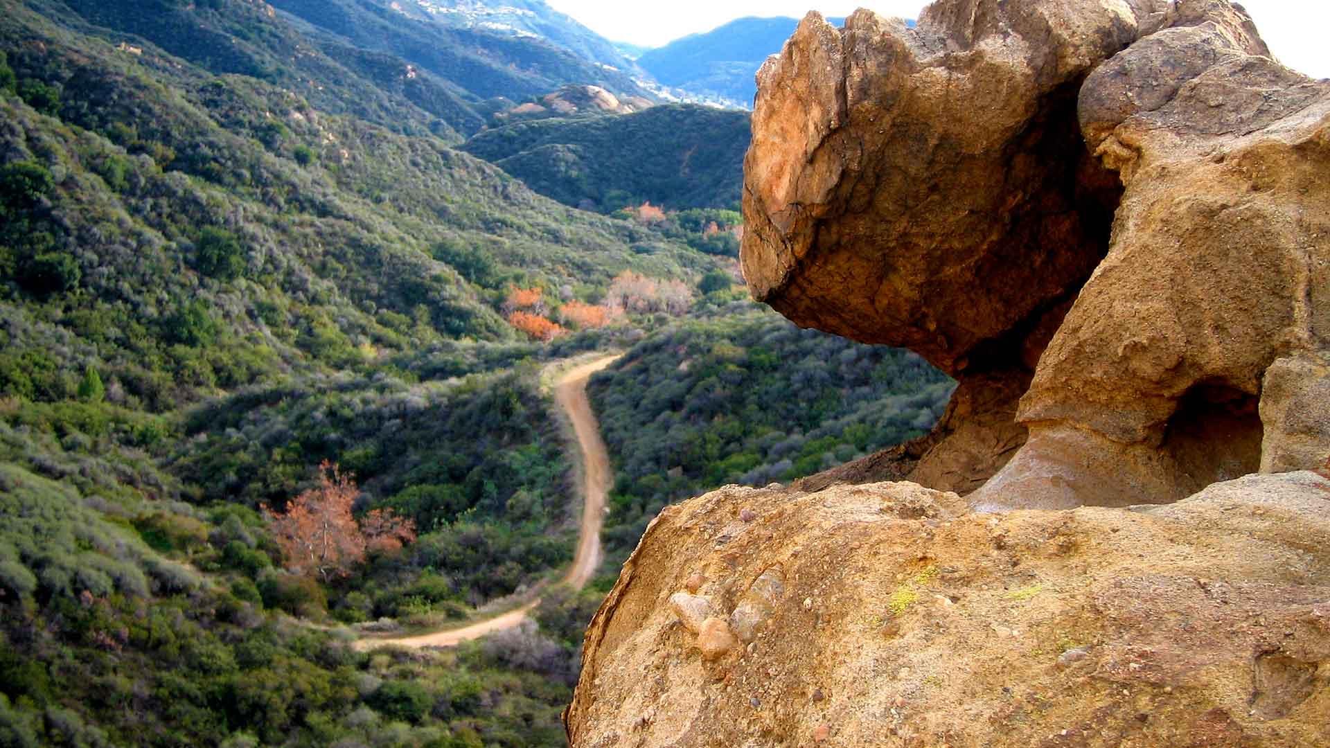 Discover LA's Zen Tour